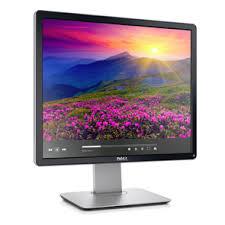 Dell 19 Monitor  P1914S