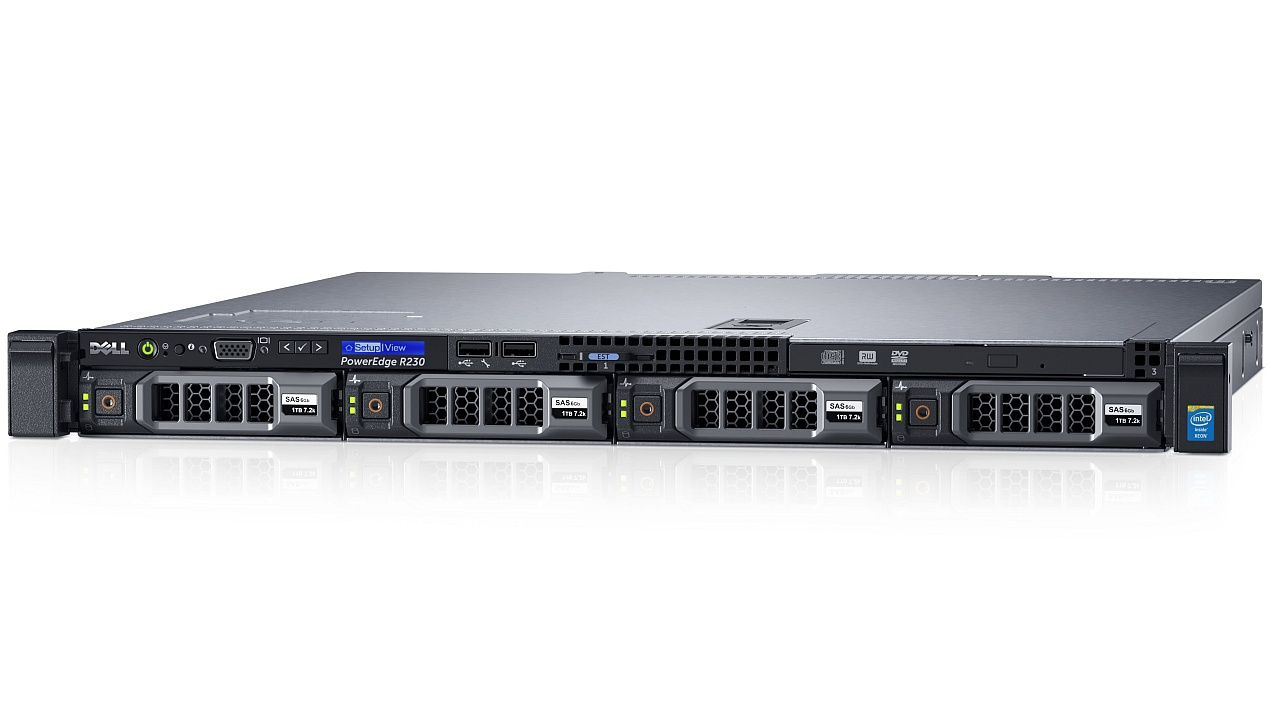 Dell EMC PowerEdge R230 HOTPLUG - 3.5 INCH