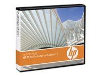 B7038AAE - HP OpenView Storage Data Protector Advanced Backup to Disk 1TB E-LTU